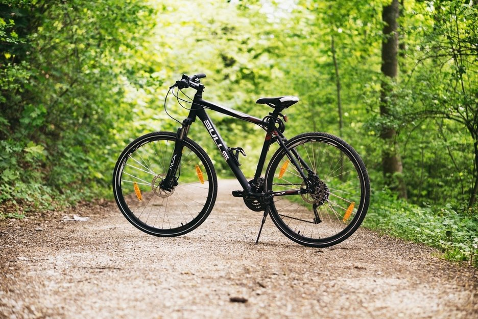 Molėtų rajone ženklinamos dviračių trasos