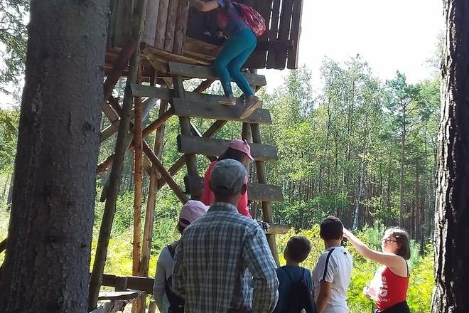 Wandern im Regionalpark Labanoras