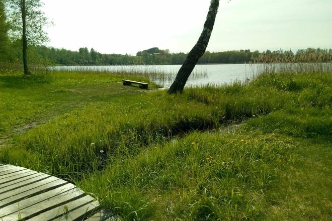 Maudymosi vieta  - Duobio ežeras, Alantos mstl.