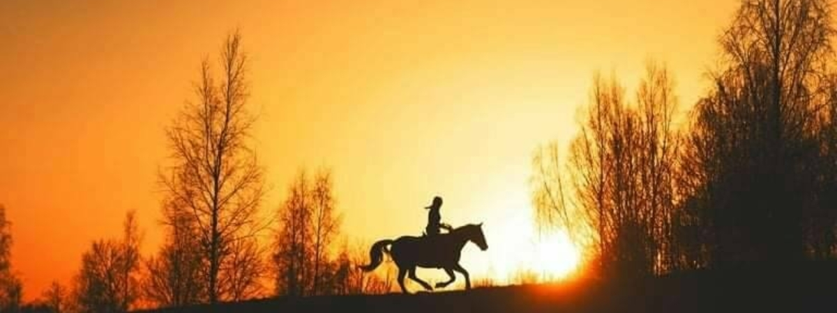 """Молетские кони"""