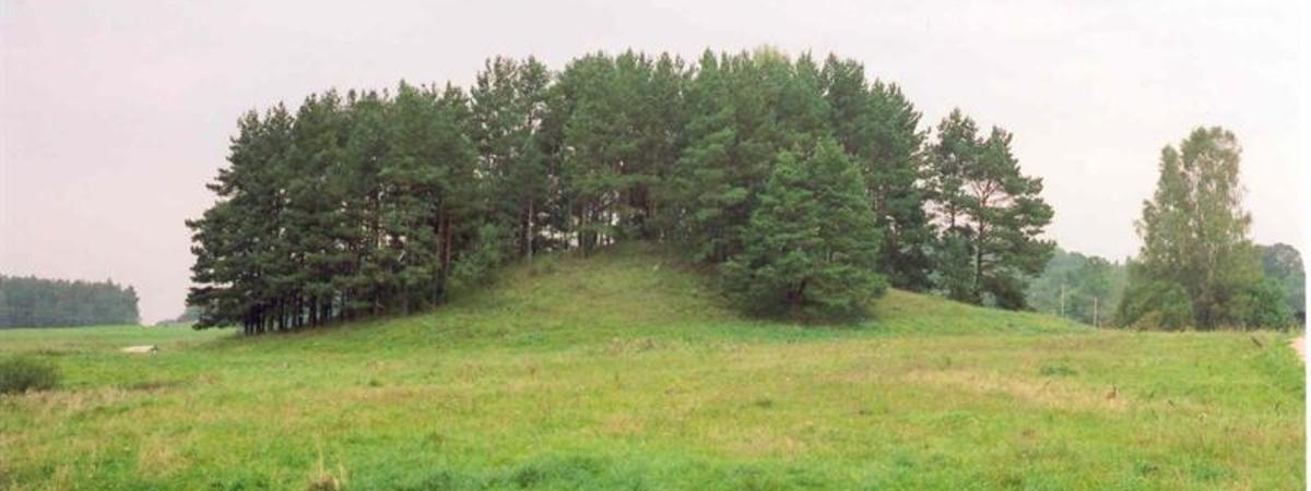 Grabhügel in Svobiškėlis