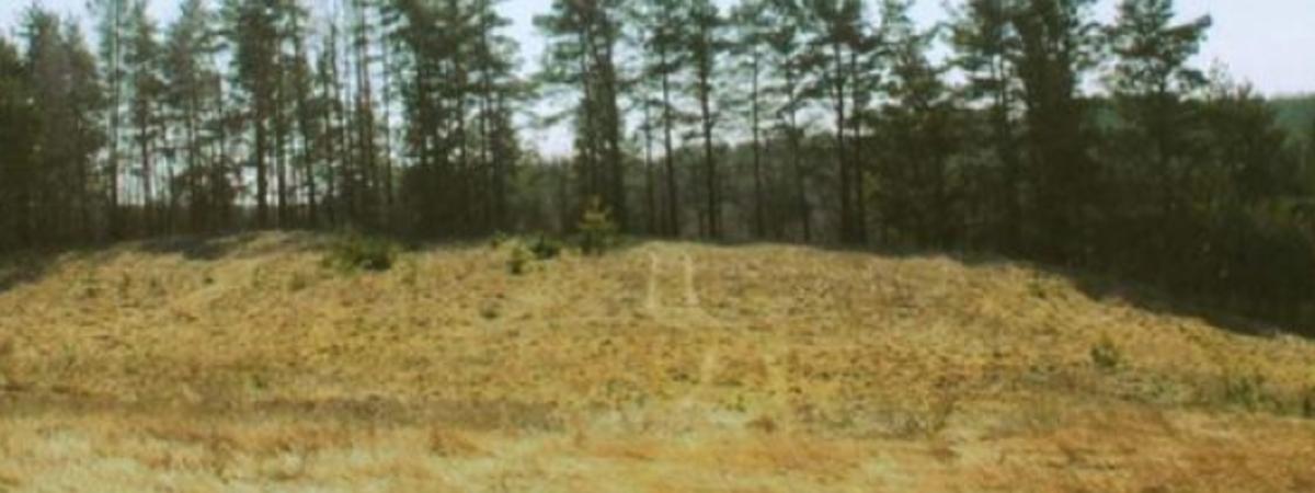 Čiulėnų piliakalnis (vad. Juoduoju kalnu)