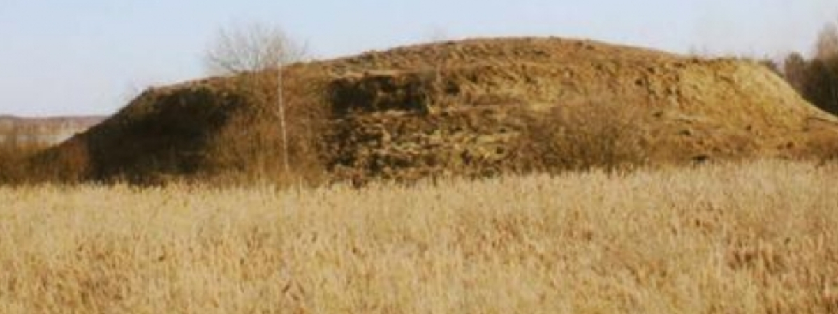 Pavandenės piliakalnis